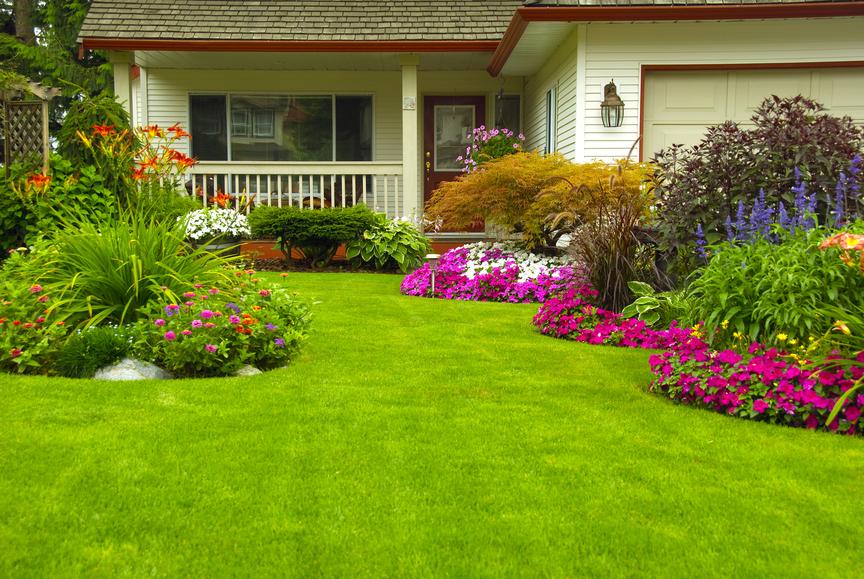 Lawn Care Service Provider