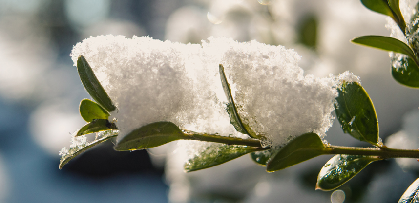 Environment Friendly Tips to Clear Snow and Ice