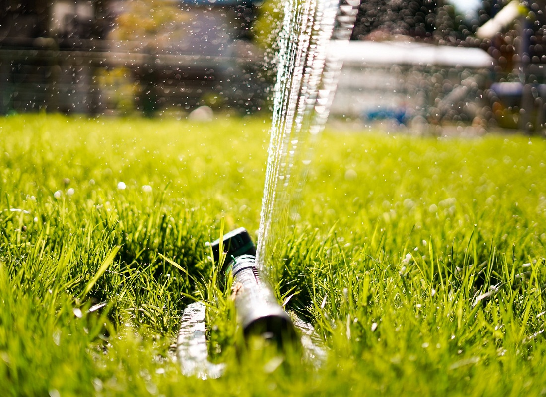 lawn watering schedule in summer