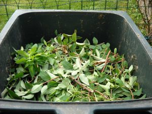 composting for organic landscaping