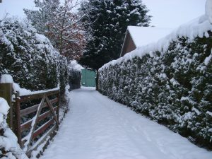 snowplow for driveway
