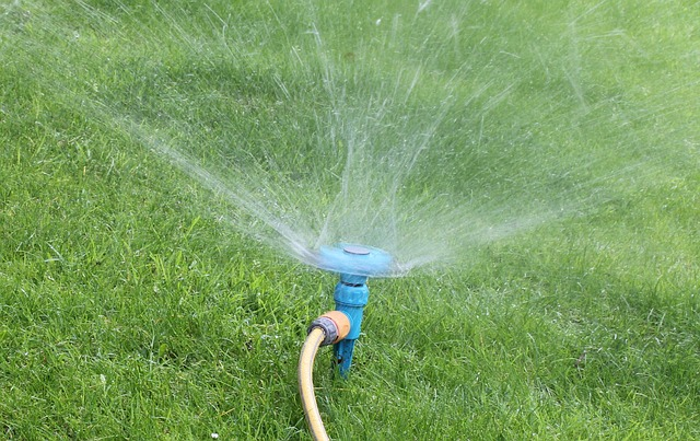sprinkle lawn
