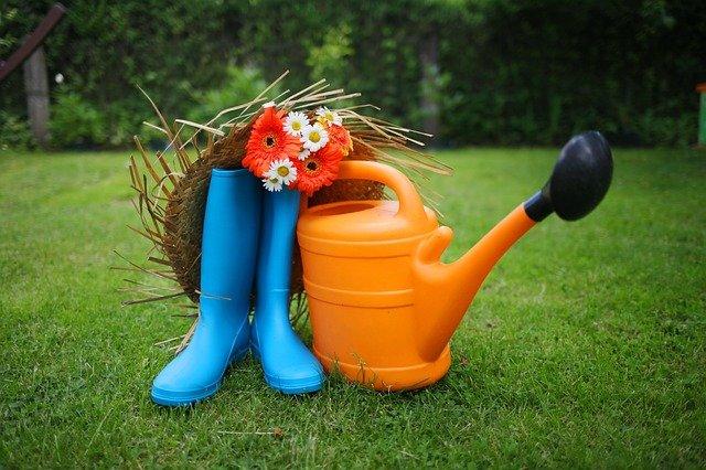 spring lawn preparation