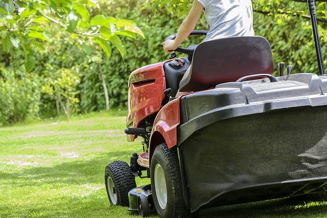 early spring lawn care