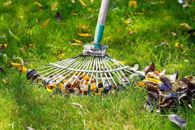 spring pest maintenance