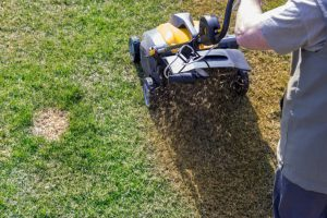 when to aerate lawn