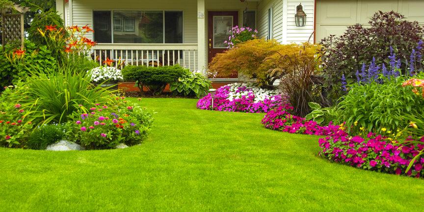 Lawn-Care-Service-Provider-Tips
